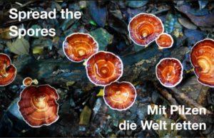 Mit Pilzen die Welt retten - 1. Lüneburger Pilztage @ mosaique Lüneburg